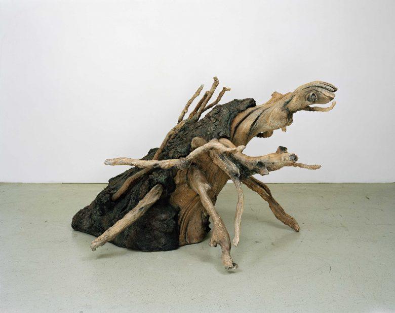 @ Vincent Kohler Gregor, racine, animal