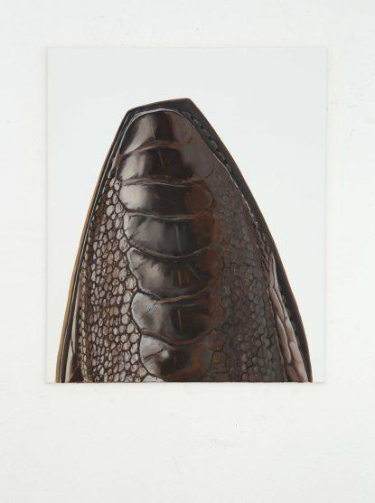 TipToe_08_VincentKohler cowboy boots santiag